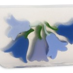 soap_bluebells